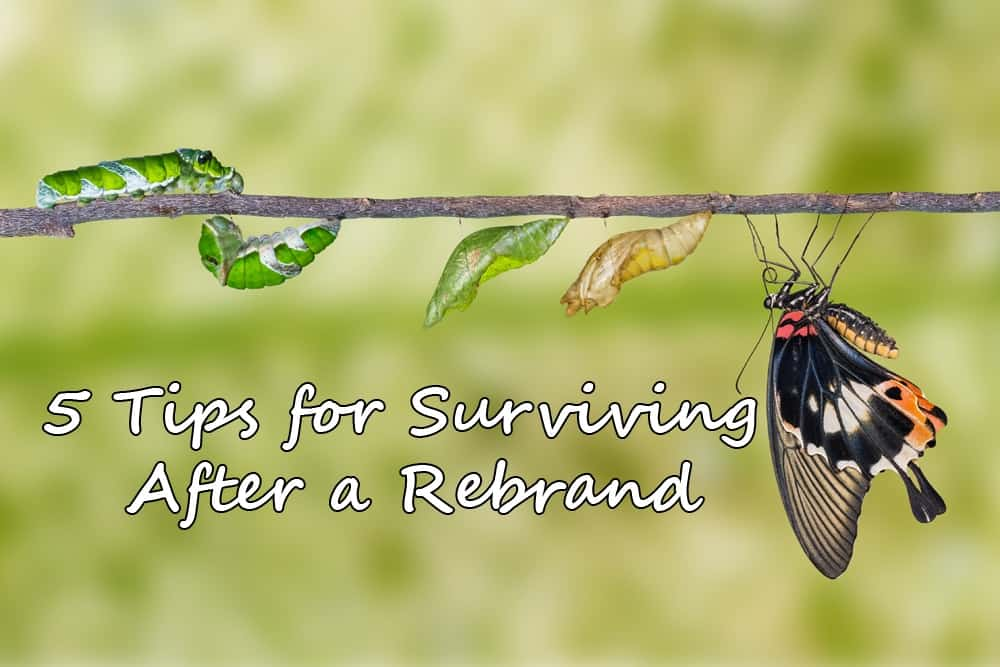 5 Tips for Surviving After a Rebrand With SEO