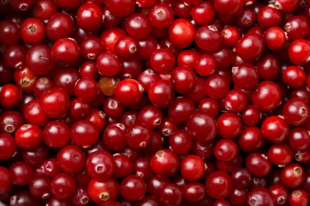 cranberry etymology